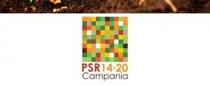 Psr 2014/2020, Petracca: pubblicati quattro nuovi bandi
